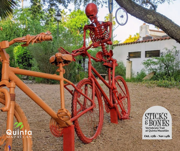 Quinta Mazatlán's Sticks and Stones Trail Theme