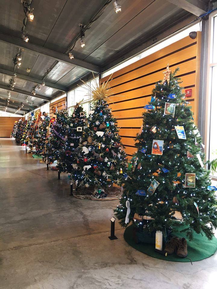 The Christmas Tree.Christmas Tree Forest Opening At Imas Explore Mcallen