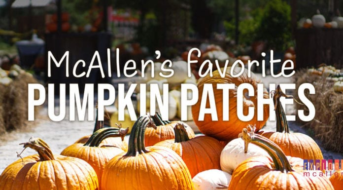 McAllen's Favorite Pumpkin Patches
