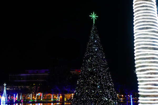 The McAllen Convention Center Christmas Tree